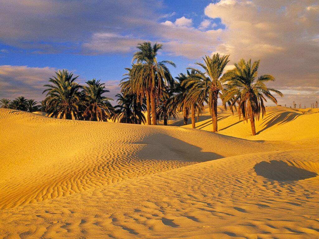 Тунис лето