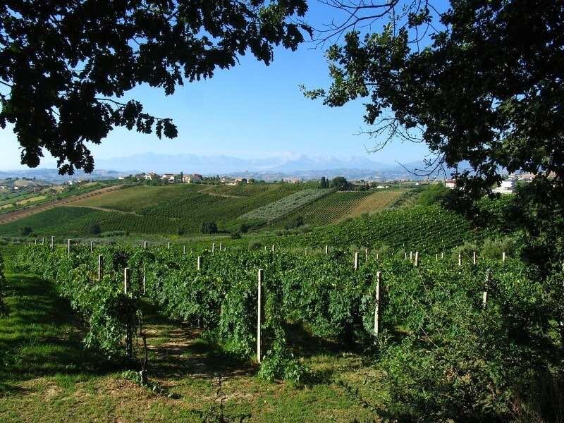 италия вино